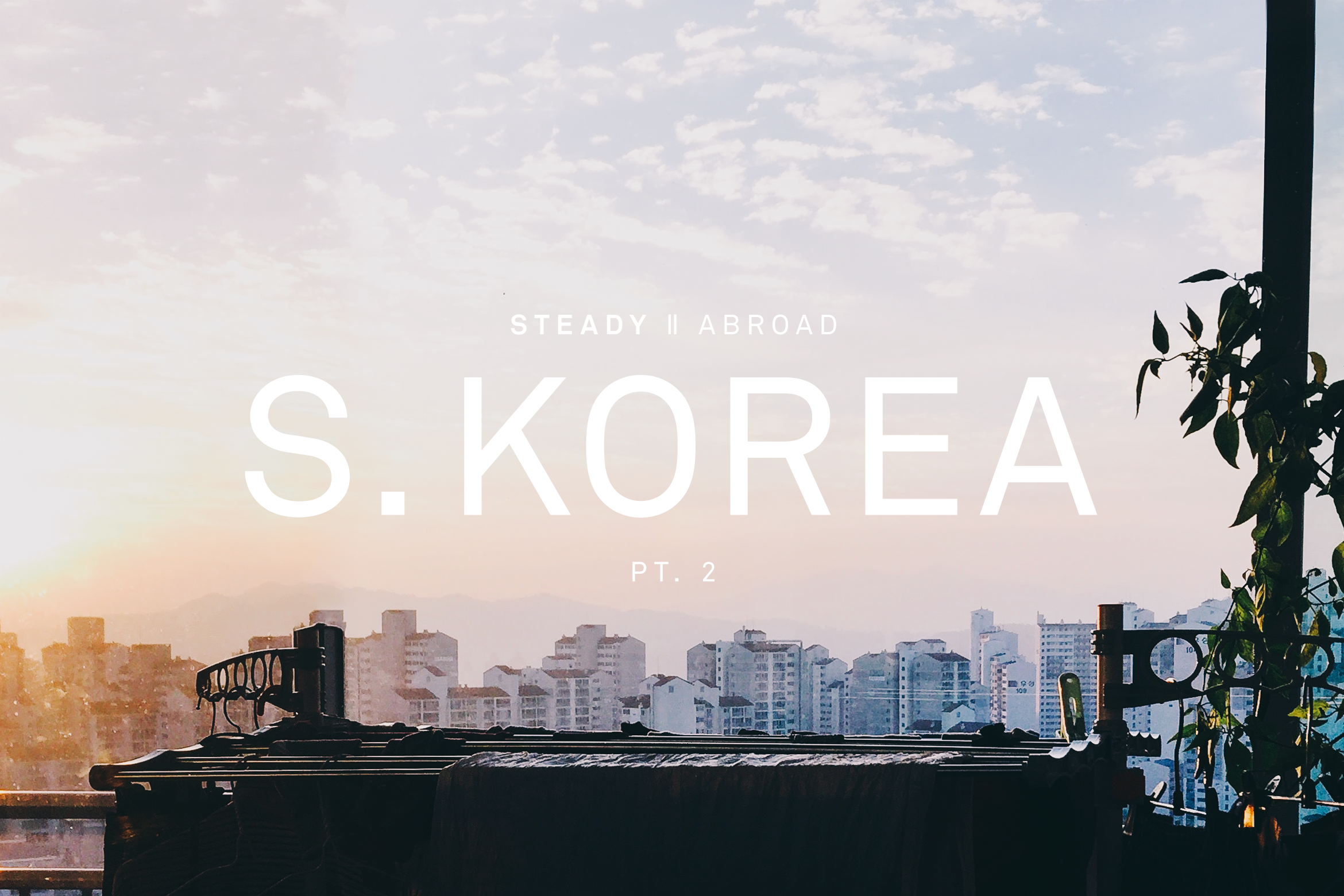 STEADY ABROAD: SOUTH KOREA PT.2