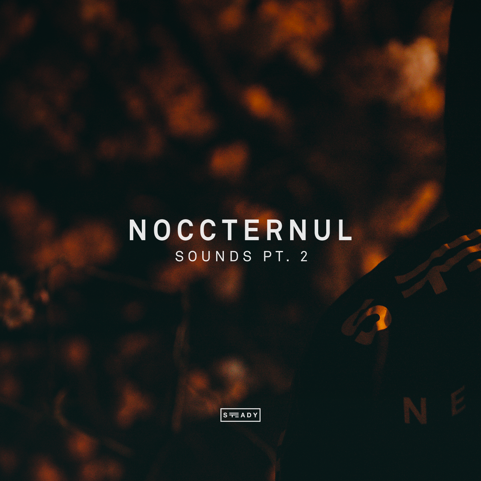 STEADY BUMPIN': 'NOCCTERNUL' SOUNDS PT.2