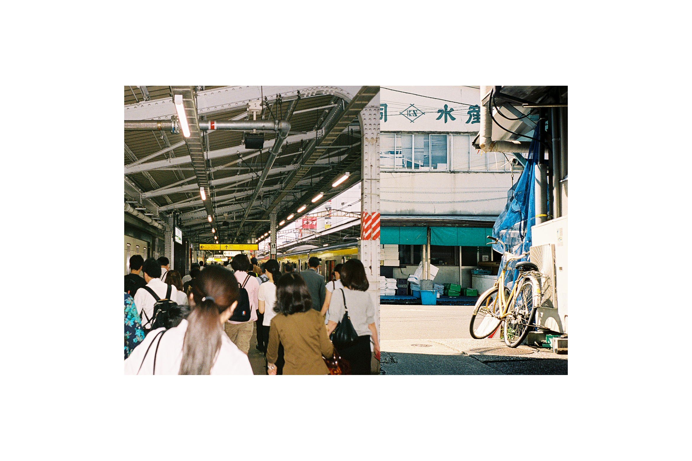 steady_tyo_cal_film_030b