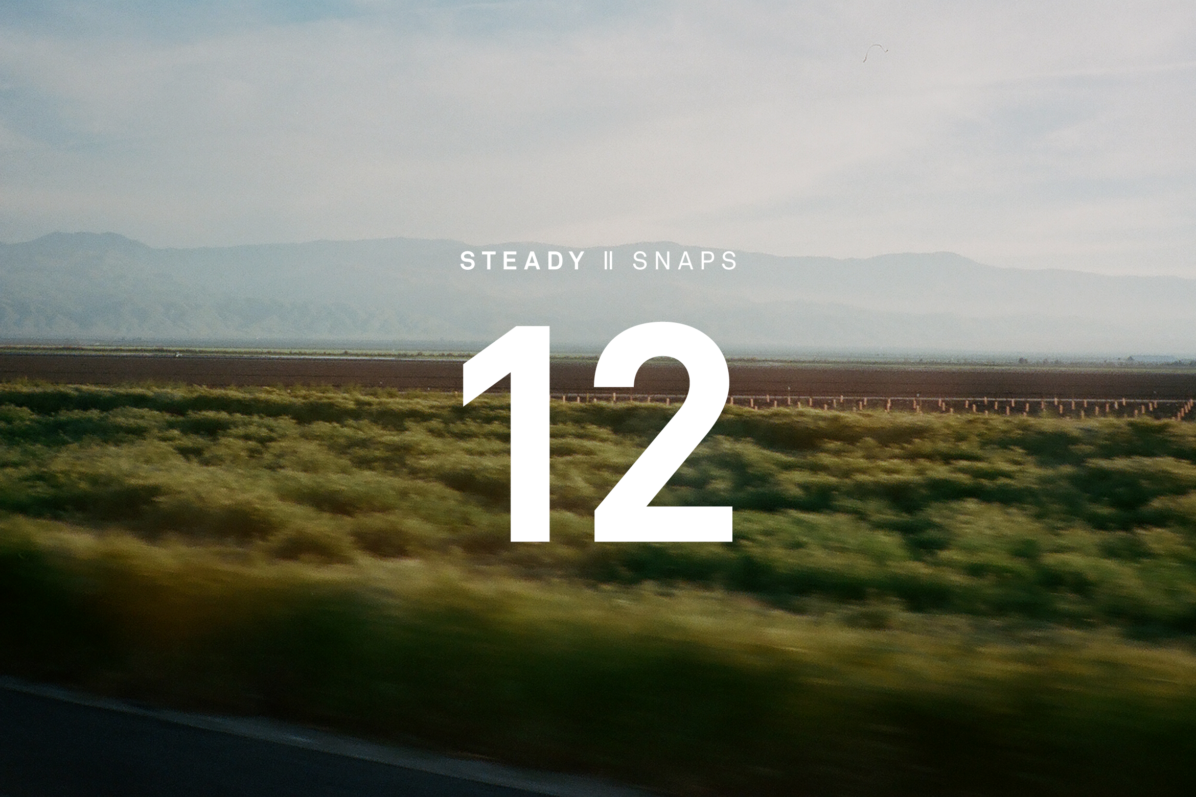 STEADY SNAPS: 12