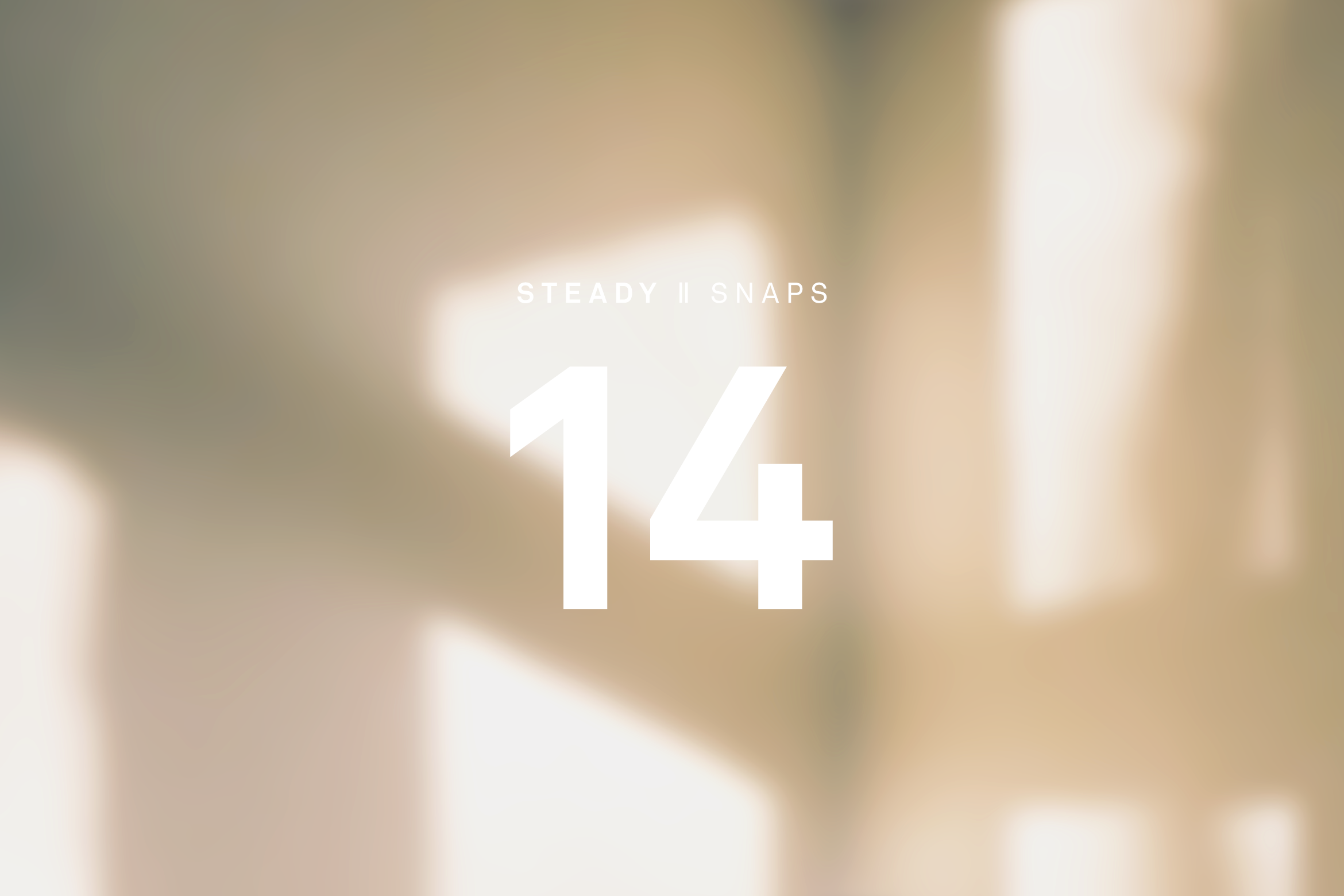 STEADY SNAPS: 14